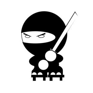 14_ninja